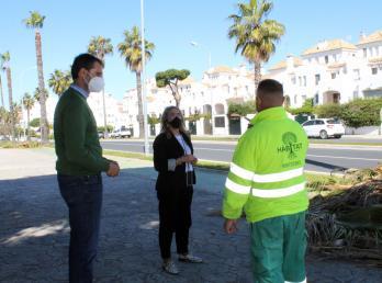 El Ayuntamiento de Cartaya acomete la poda de las palmeras y arbolado en Nuevo Portil.